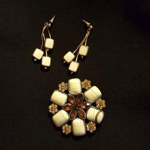 Fashion earrings &  Brooch set